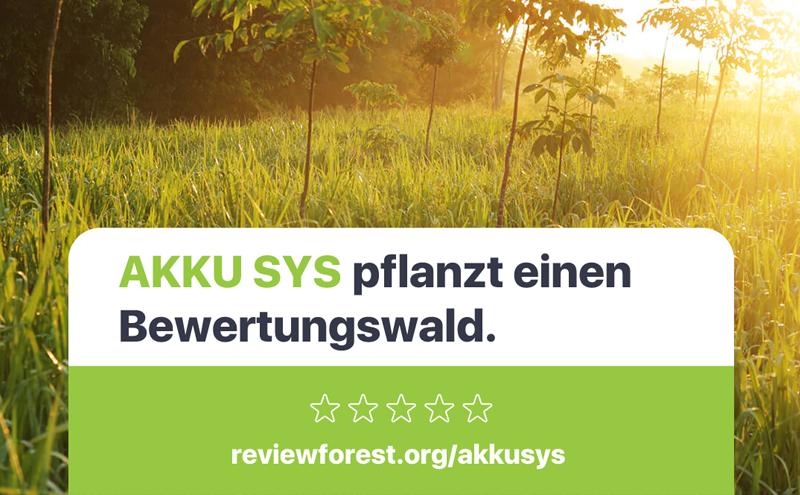 Akkusys pflanzt einen Baum in Ihrem Namen