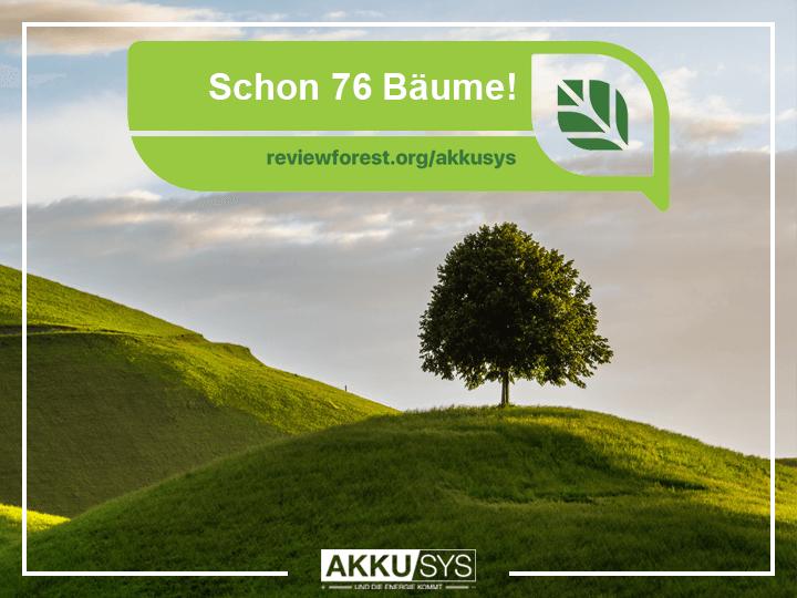 Schon 76 Bäume im AKKU SYS Bewertungswald